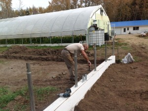 Dawn's dad, Aime, has been hard at work building the new cold frame so it'll be ready for planting come springtime.